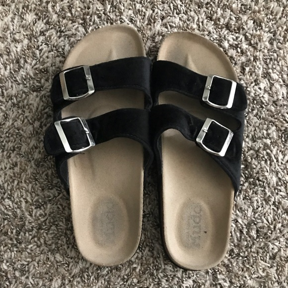 37d515916 mudd velvet buckle sandals. M 5b80553774359bd089b9bae4